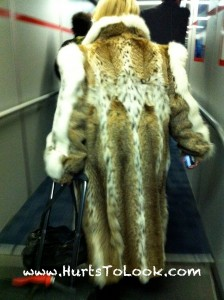Photo of Fur Coat JFK Airport